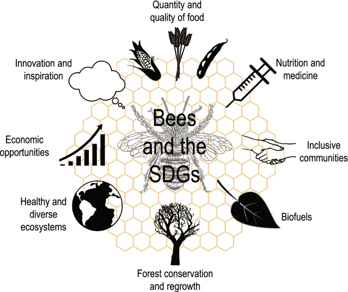 Why bees are critical for achieving sustainable development ...