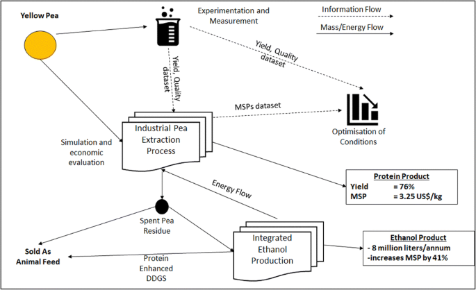 Optimizing The Processes Of Extracting Proteins From Yellow Peas And Ethanol Production From Spent Pea Residues Springerlink