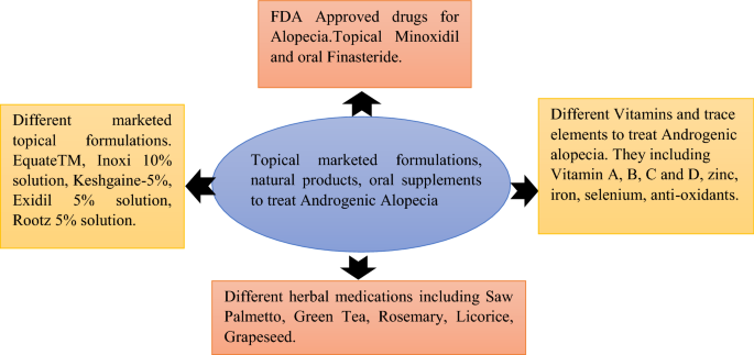 A Systemic Review On Topical Marketed Formulations Natural Products And Oral Supplements To Prevent Androgenic Alopecia A Review Springerlink