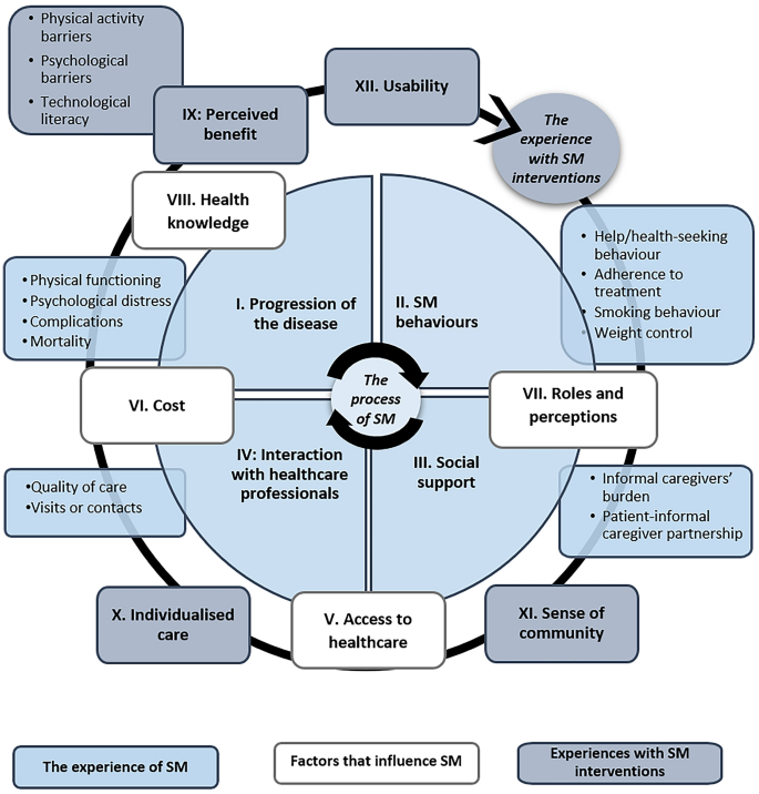 The Perspectives of Patients with Chronic Diseases and Their ...