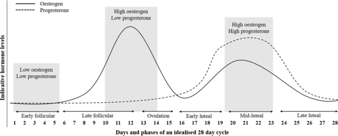 The Effects of Menstrual Cycle Phase on Exercise Performance in ...