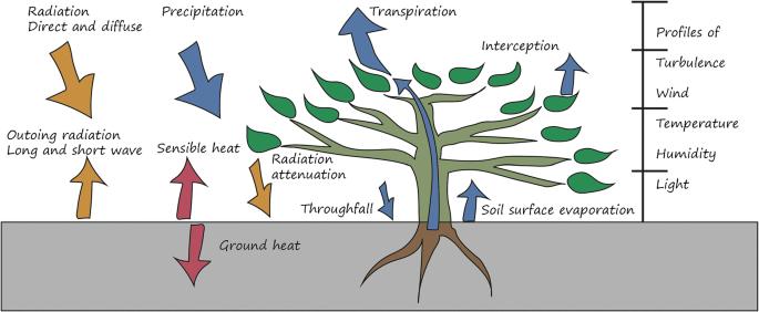 Advances in Land Surface Modelling | SpringerLink
