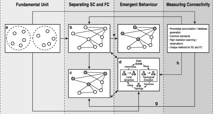 Connectivity and complex systems: learning from a multi