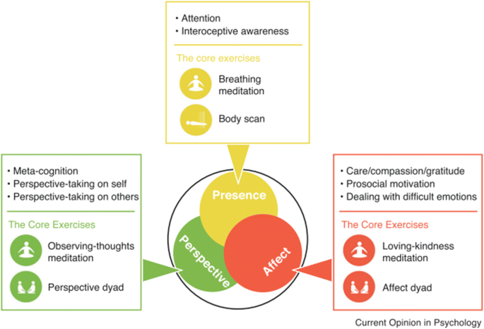 The Way Forward in Mindfulness and Sustainability: a Critical ...