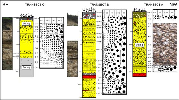 Holocene palaeoenvironmental evolution of Salts Island (Tinto and ...