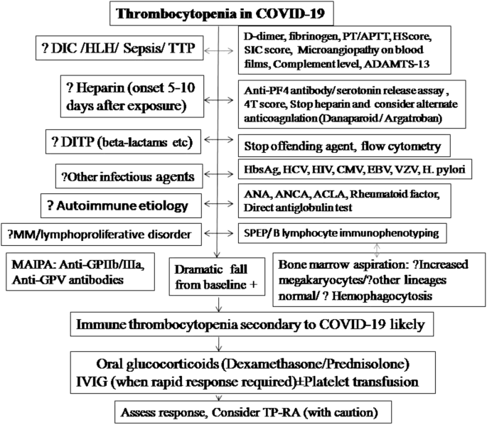 Immune Thrombocytopenia Secondary To Covid 19 A Systematic Review Springerlink