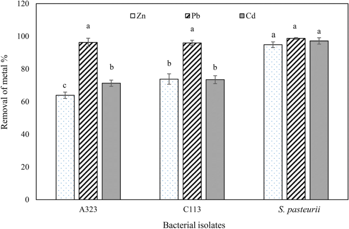 Removal Of Heavy Metals Zinc Lead And Cadmium By Biomineralization Of Urease Producing Bacteria Isolated From Iranian Mine Calcareous Soils Springerlink