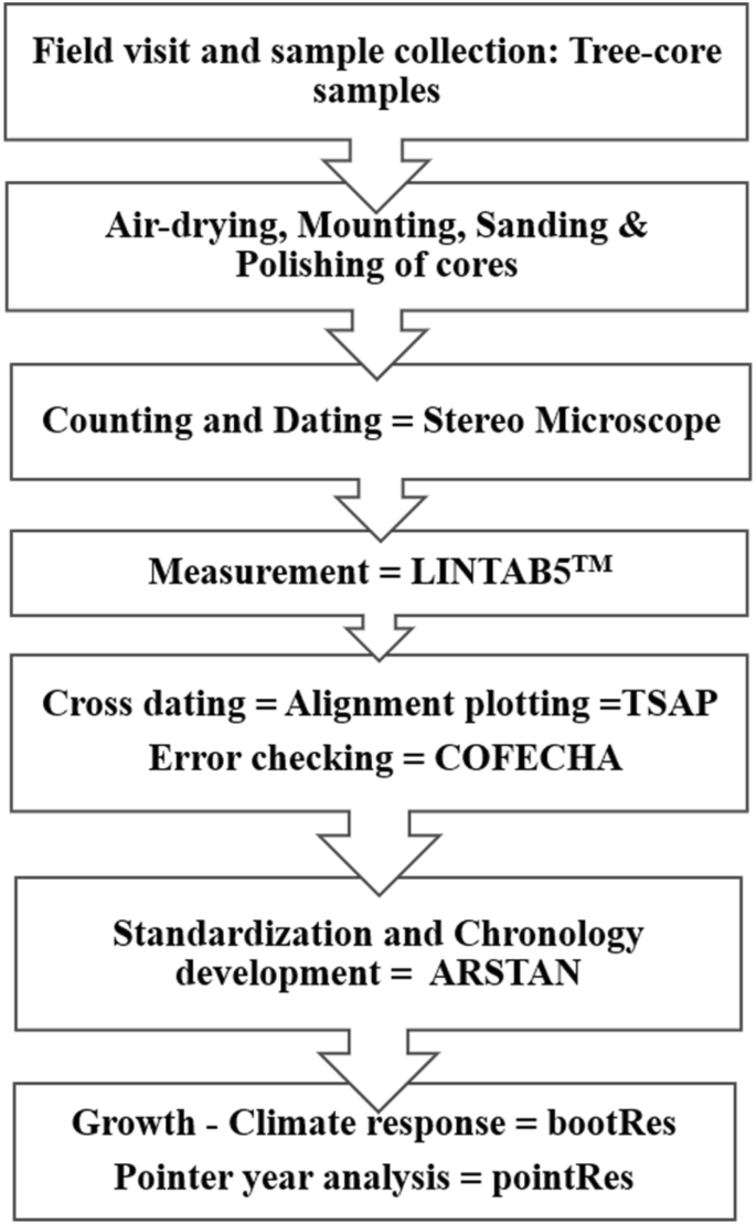 Tree-ring climate response of two Larix species from the central ...