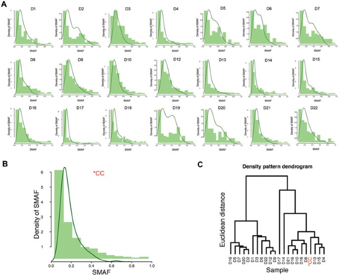 Discovery Of Biclonal Origin And A Novel Oncogene Slc12a5 In Colon Cancer By Single Cell Sequencing Cell Research