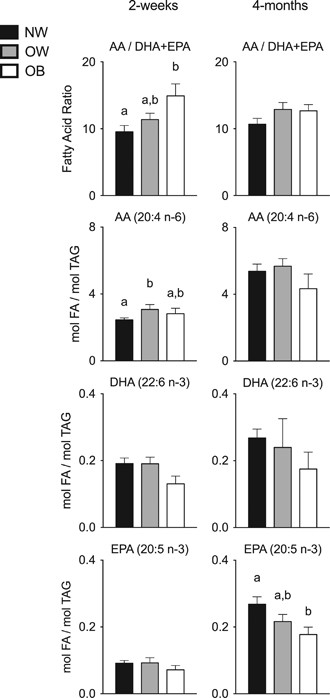 Early infant adipose deposition is positively associated with the n