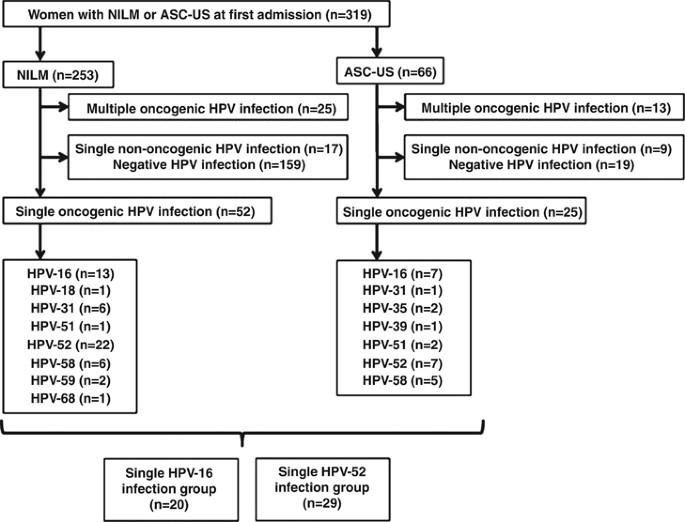 papillomavirus n 16 verucile inghinale