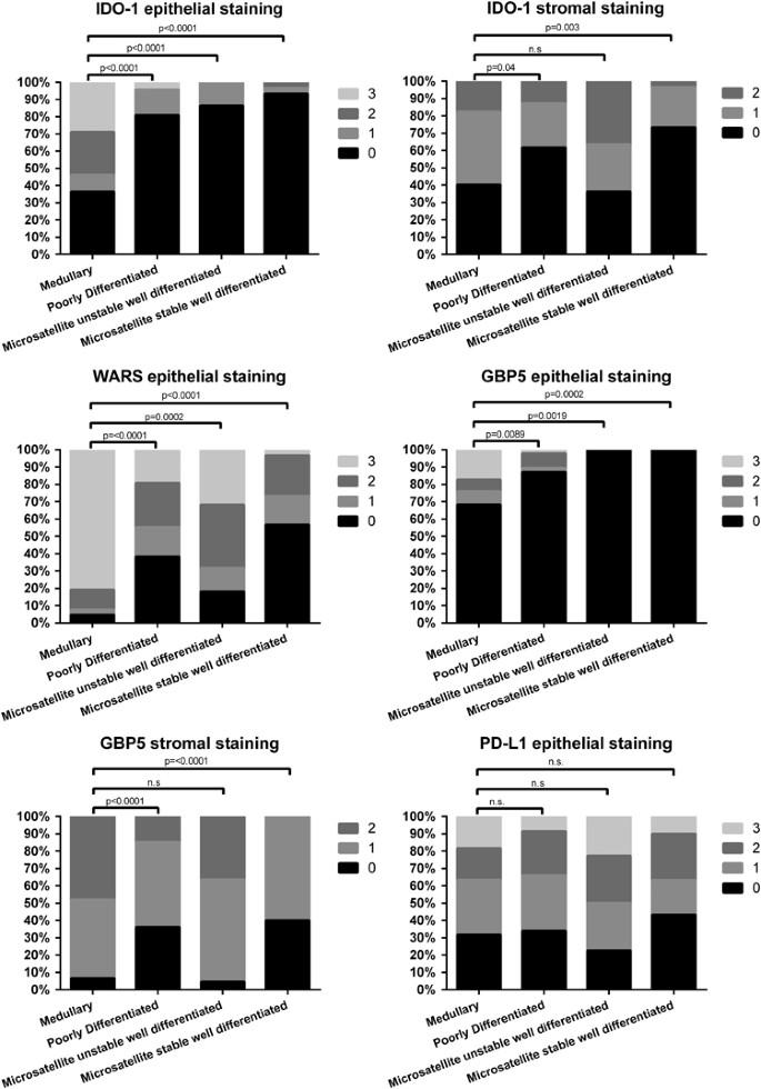 Medullary Carcinoma Of The Colon A Distinct Morphology Reveals A Distinctive Immunoregulatory Microenvironment Modern Pathology