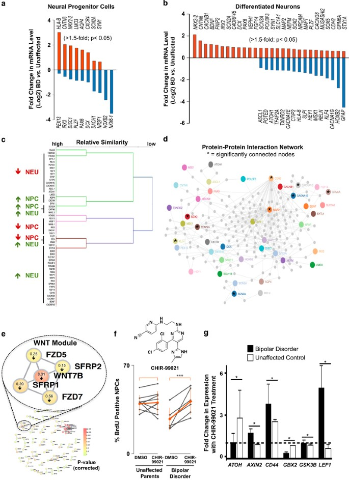 Characterization Of Bipolar Disorder Patient-specific Induced Pluripotent  Stem Cells From A Family Reveals Neurodevelopmental And MRNA Expression  Abnormalities | Molecular Psychiatry