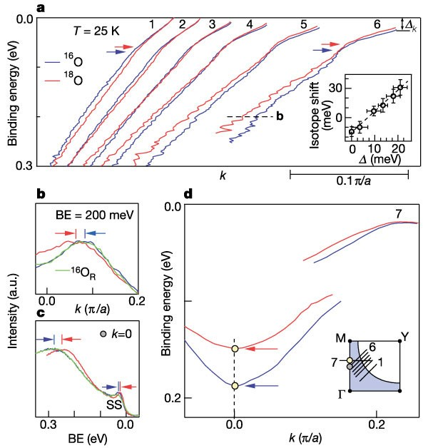 An Unusual Isotope Effect In A High-transition-temperature