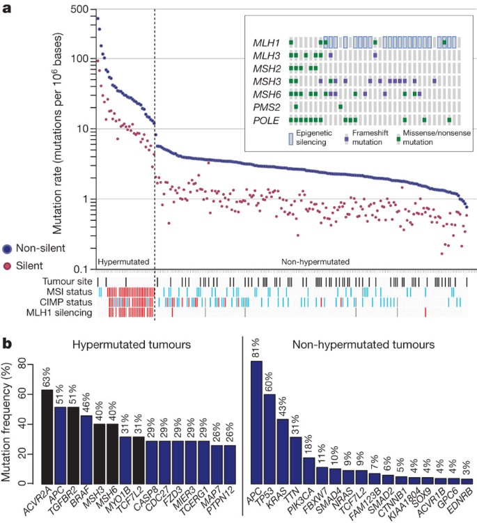 Comprehensive Molecular Characterization Of Human Colon And Rectal Cancer Nature