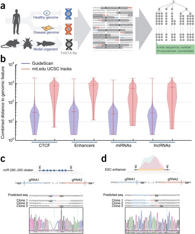 GuideScan software for improved single and paired CRISPR
