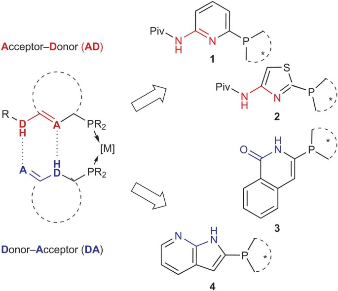 A Combinatorial Approach To The Identification Of Self Assembled Ligands For Rhodium Catalysed Asymmetric Hydrogenation Nature Chemistry