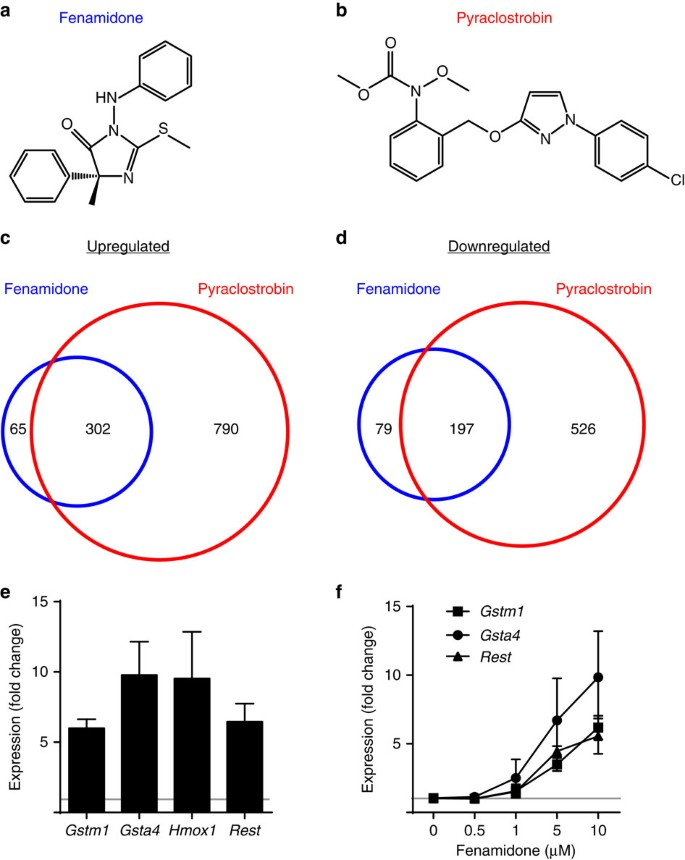 Pesticide Effect On Cells May Resemble >> Identification Of Chemicals That Mimic Transcriptional