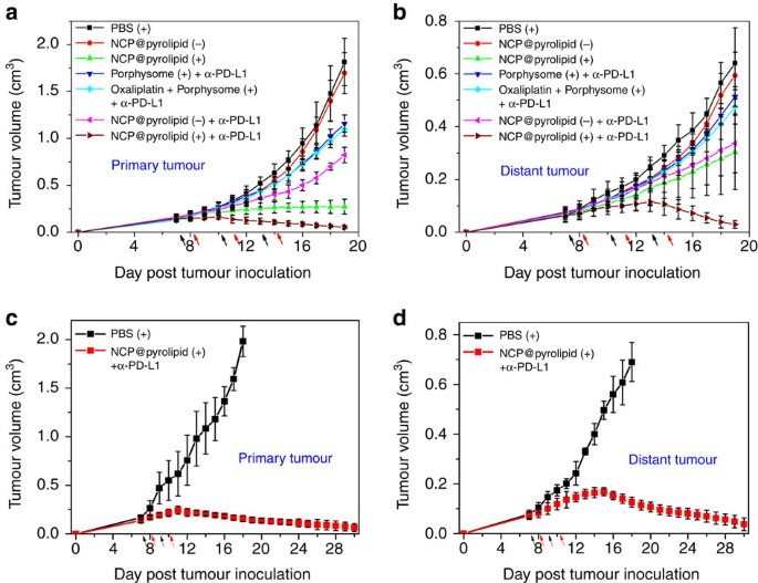 Core Shell Nanoscale Coordination Polymers Combine Chemotherapy And Photodynamic Therapy To Potentiate Checkpoint Blockade Cancer Immunotherapy Nature Communications