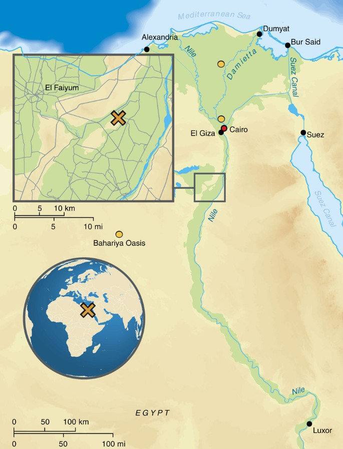 Ancient Egyptian Mummy Genomes Suggest An Increase Of Sub Saharan African Ancestry In Post Roman Periods Nature Communications