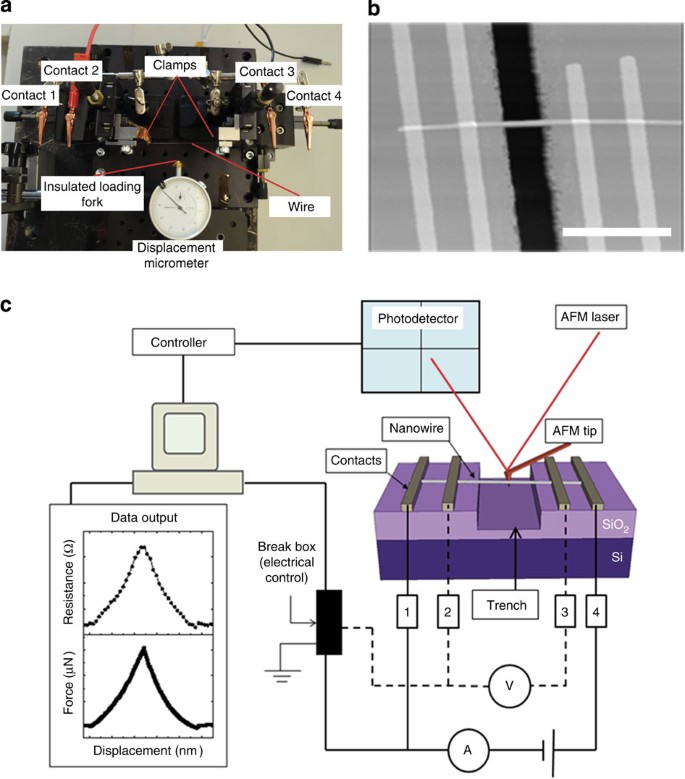 Poisson's ratio of individual metal nanowires | Nature ... on