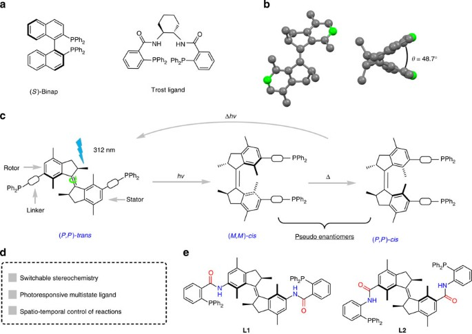 Dynamic Control Of Chirality In Phosphine Ligands For Enantioselective Catalysis Nature Communications