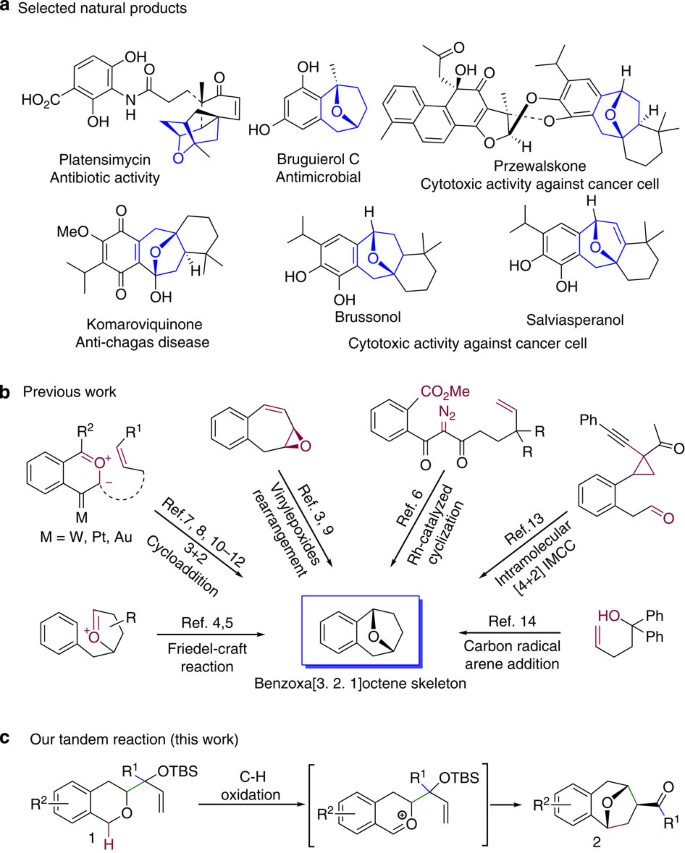 Tandem C–H Oxidation/cyclization/rearrangement And Its Application To  Asymmetric Syntheses Of (−)-brussonol And (−)-przewalskine E | Nature  Communications
