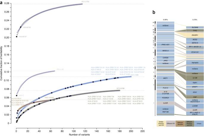 Analysis of five chronic inflammatory diseases identifies 27 new ...