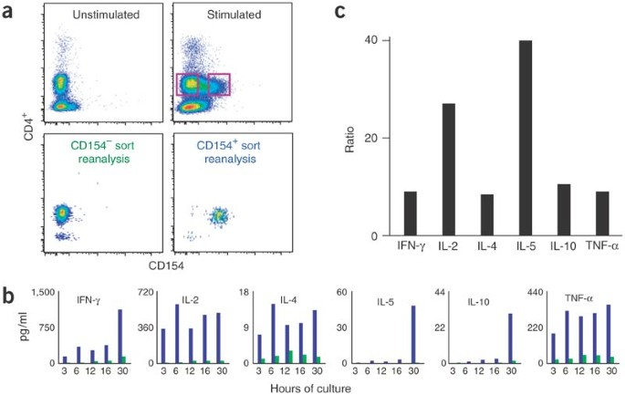 A live-cell assay to detect antigen-specific CD4 + T cells