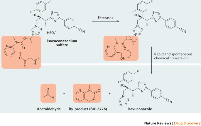 The Expanding Role Of Prodrugs In Contemporary Drug Design And