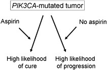 Discovery Of Colorectal Cancer Pik3ca Mutation As Potential Predictive Biomarker Power And Promise Of Molecular Pathological Epidemiology Oncogene