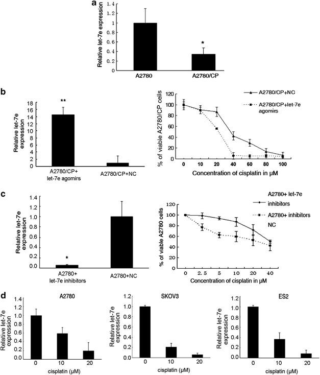Deregulation Of Let 7e In Epithelial Ovarian Cancer Promotes The Development Of Resistance To Cisplatin Oncogenesis