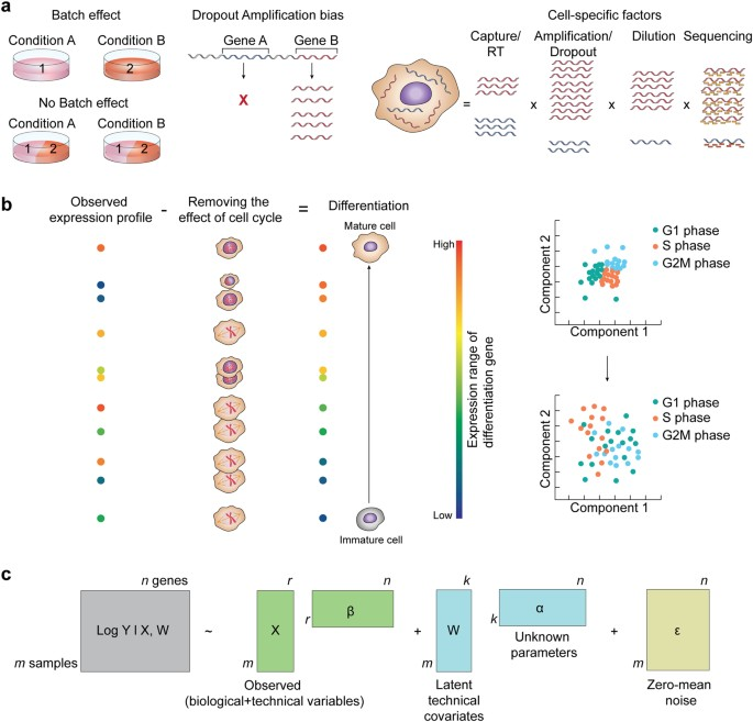 Single-cell RNA sequencing technologies and bioinformatics pipelines