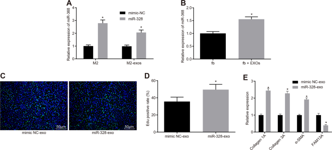 microRNA-328 in exosomes derived from M2 macrophages exerts