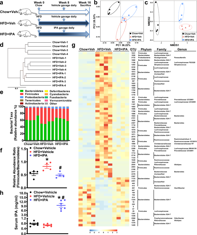 Indole-3-propionic acid inhibits gut dysbiosis and endotoxin