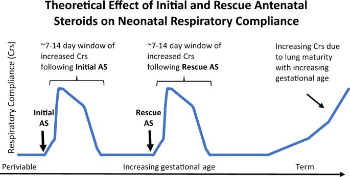 theoretical model of the effect of the initial course and rescue course of  antenatal steroids (as) on neonatal respiratory compliance