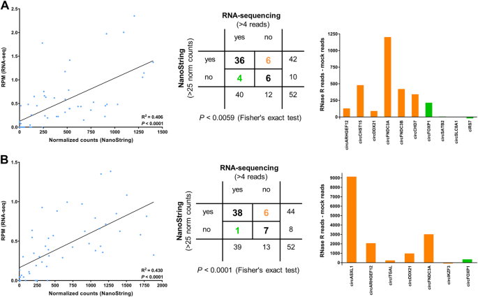 Enzyme-free digital counting of endogenous circular RNA