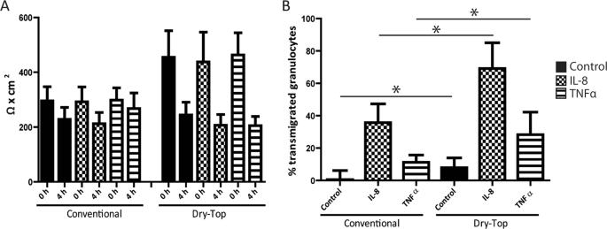 Optimized cultivation of porcine choroid plexus epithelial cells, a