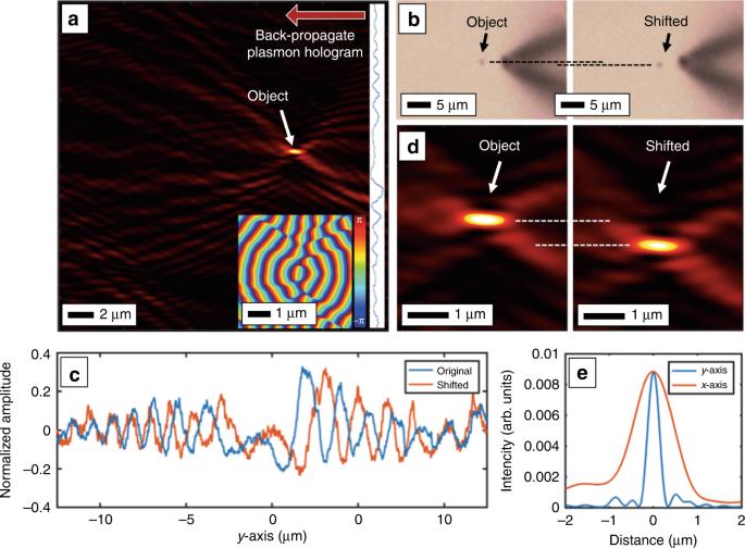 Digital plasmonic holography | Light: Science & Applications