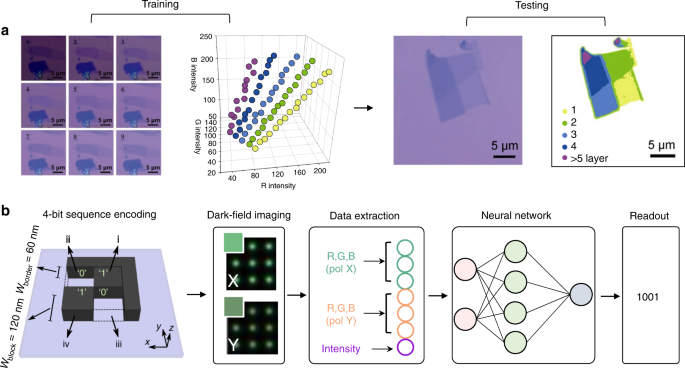 Emerging role of machine learning in light-matter interaction
