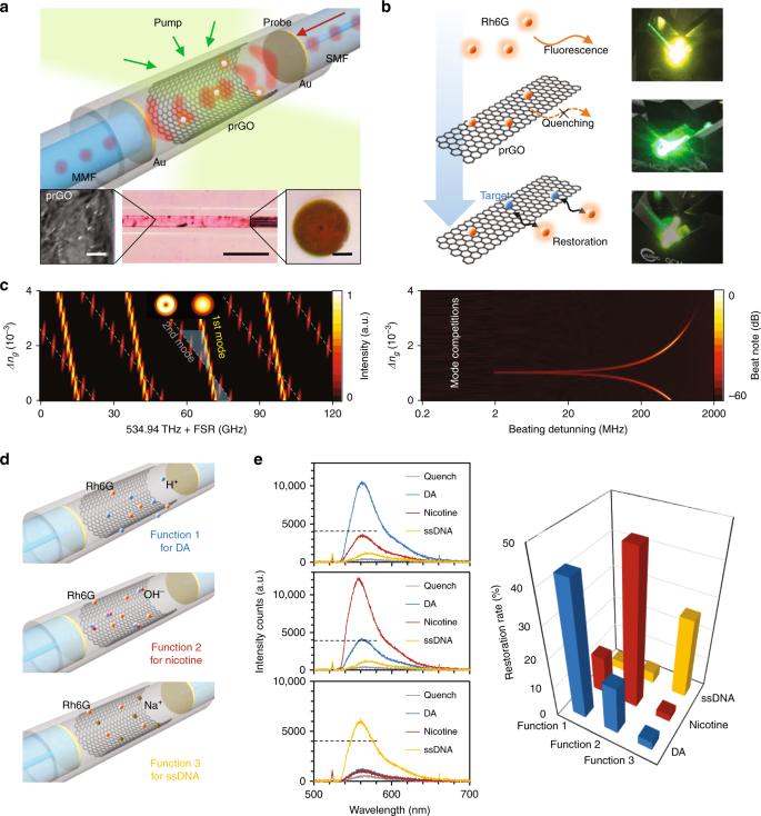 Biochemical sensing in graphene-enhanced microfiber resonators with in