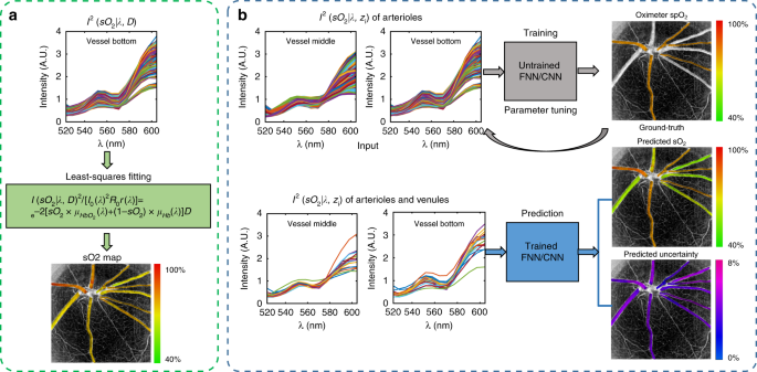 Deep spectral learning for label-free optical imaging oximetry with un