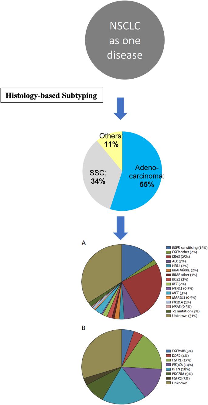 The diagnosis of non-small cell lung cancer in the molecular era