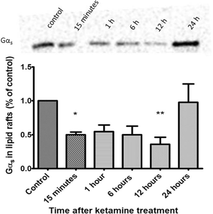NMDAR-independent, cAMP-dependent antidepressant actions of ketamine