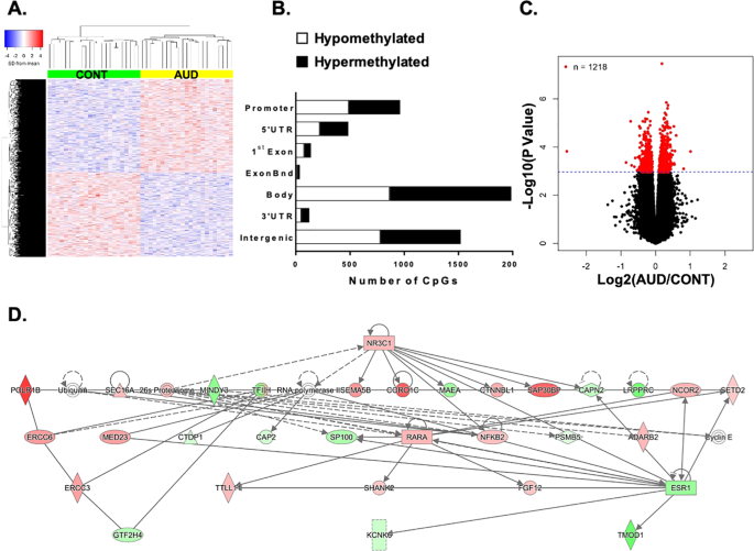 Genome-wide methylation in alcohol use disorder subjects: implications