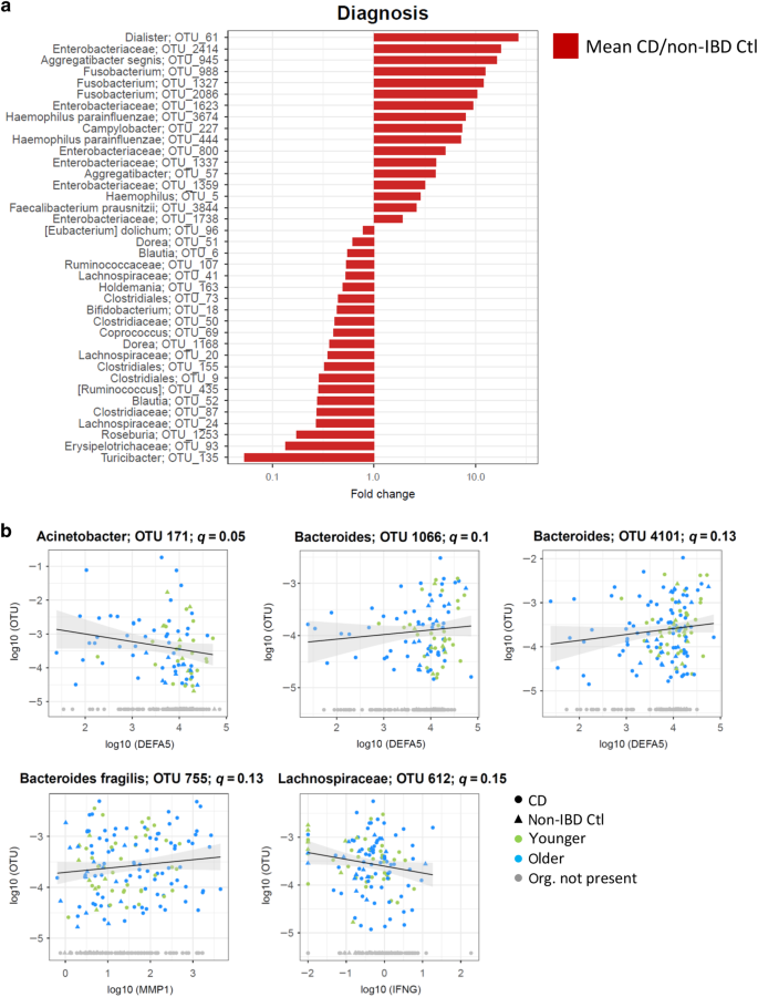 Age-of-diagnosis dependent ileal immune intensification and