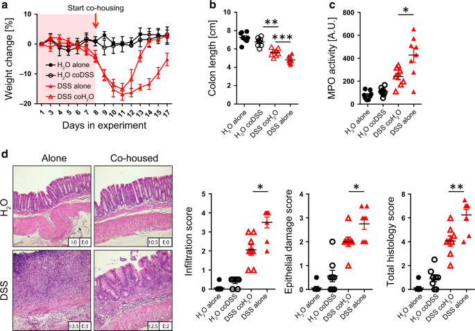 Loss of PTPN22 abrogates the beneficial effect of cohousing-mediated f