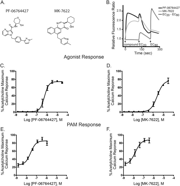 M 1 -positive allosteric modulators lacking agonist activity