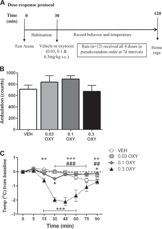 Oxytocin Found To Stimulate Social >> Oxytocin Attenuates Phencyclidine Hyperactivity And