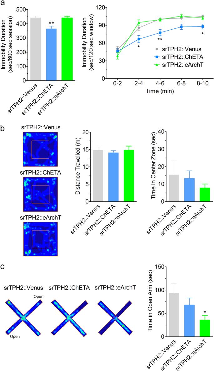 Manipulation of dorsal raphe serotonergic neurons modulates